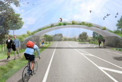 DCSS Travis Wetland Wildlife Bridge NZ - From Travis Road